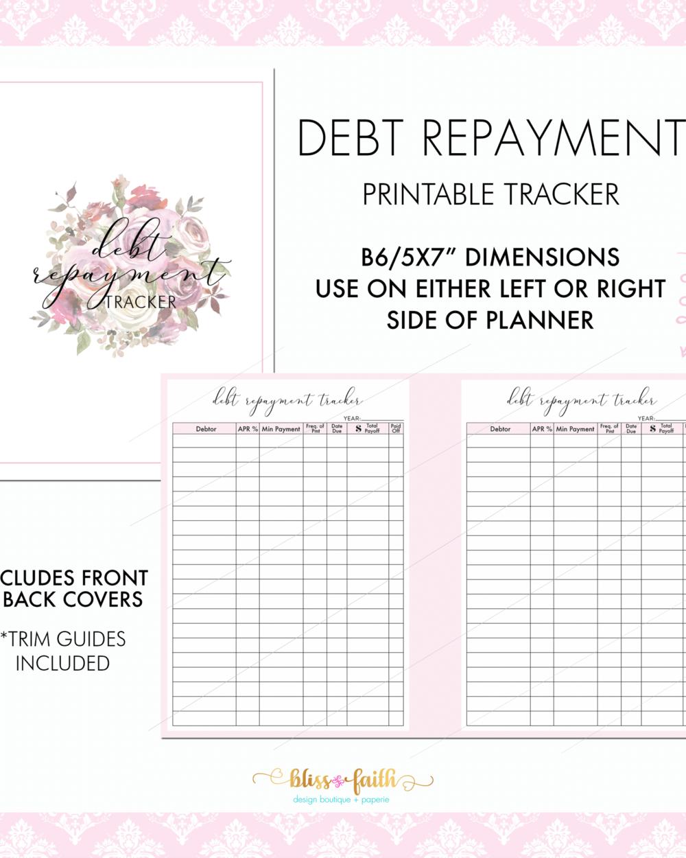 Debt Repayment Tracker Printable Planner Insert | BlissandFaith.com